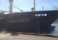 Tàu SONG NGAN chở Urea Indonesia cập cảng Quy Nhơn