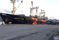 Tàu SINOCEAN HOPE chở 6.600 tấn SA do Apromaco nhập khẩu cập cảng Quy Nhơn