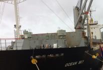 Tàu Ocean Sky chở 8.000 tấn SA Toray Nhật Bản cập cảng Quy Nhơn